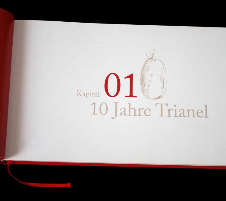 Chronik, Trianel, Buchgestaltung, wesentlich, Aachen, Design, visuelle kommunikation